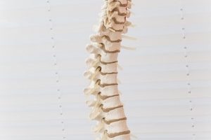What is a Spinal Subluxation?
